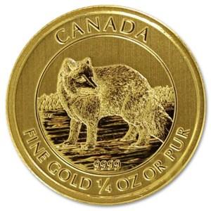 Złota moneta Arctic Fox 1/4 oz rewers