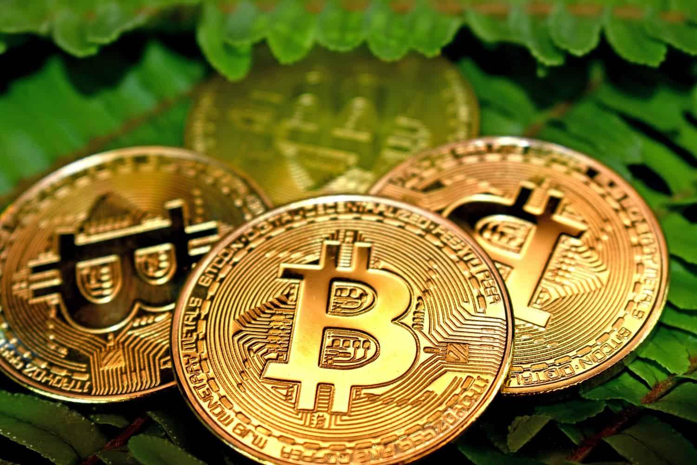 bitcoiny