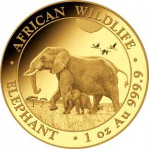 Złota moneta 1oz Słoń Somalijski 2022 rewers