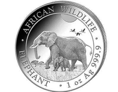 Srebra moneta 1oz Słoń Somalijski 2022 rewers