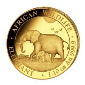 Złota moneta Słoń Somalijski 1/10 oz 2022 rewers